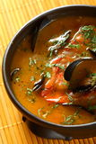 De soep van vissen Royalty-vrije Stock Afbeeldingen