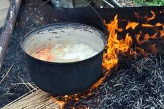 De soep van vissen - de Deltamanier van Donau Stock Afbeeldingen