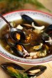 De soep van vissen met dille stock foto's
