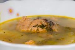 De soep van vissen met zalm stock afbeelding