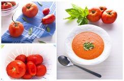 De soepcollage van de tomaat stock afbeeldingen