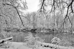 De sombere winter Royalty-vrije Stock Foto's