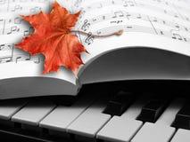 De sonate van de herfst Royalty-vrije Stock Foto