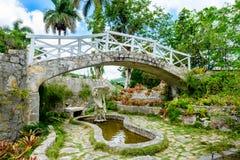 De Soroa-Orchidee Botanische Tuin in Cuba royalty-vrije stock fotografie