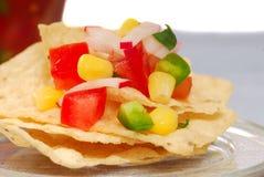 De spaanders van de tortilla met salsa Royalty-vrije Stock Foto