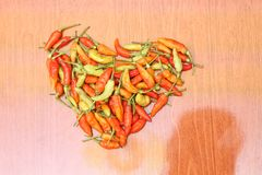 De Spaanse peper is het fruit van installaties van de soort Capsicum, versie 4 stock afbeelding