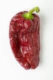 De Spaanse peper van Ancho Stock Foto