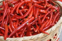 De Spaanse pepers Royalty-vrije Stock Afbeeldingen