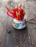 De Spaanse pepers van de herfst Stock Afbeeldingen