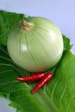 De Spaanse pepers van de ui en van het paar op koolzaadachtergrond Stock Foto's