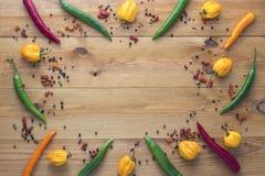 De Spaanse peperspeper van cayennepeper, gele habaneropeper, pepperoncinipeper en kleurenpeper Stock Foto