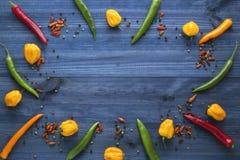 De Spaanse peperspeper van cayennepeper, gele habaneropeper, pepperoncinipeper en kleurenpeper Stock Fotografie