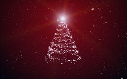 De spar van Kerstmis Royalty-vrije Stock Foto's