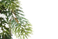 De spar van Kerstmis met decoratie Stock Afbeeldingen