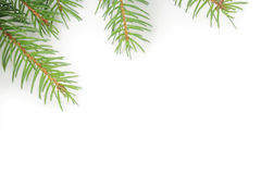 De spar van Kerstmis met decoratie Royalty-vrije Stock Afbeeldingen