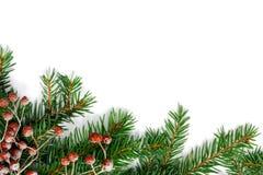 De spar van Kerstmis met decoratie Stock Foto