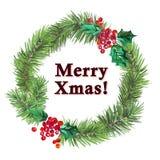 De sparrenkroon van waterverf artistieke hand getrokken die Kerstmis met het element & de gelukwens van de hulstbes wordt verfraa Royalty-vrije Stock Afbeelding