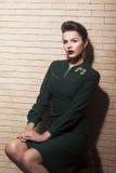 De spectaculaire Mooie Bruine Vrouw van het Haar - Retro Stijl, Pinup Royalty-vrije Stock Foto's