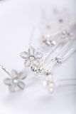 De spelden van de zilveren bruiloft Royalty-vrije Stock Fotografie