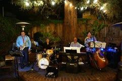 De spelen van de jazzband onder aangestoken boom Stock Foto's
