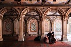 De spelencello van de straatmusicus in Bethesda Terrace, Central Park, N royalty-vrije stock afbeeldingen