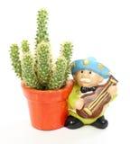 De speler van de cactus en van mariachi royalty-vrije stock fotografie