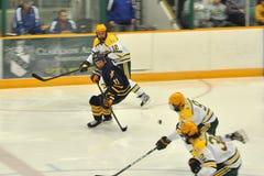 De spelers van Clarkson in NCAA het Spel van het Hockey stock foto's