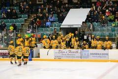 De spelers van Clarkson in NCAA het Spel van het Hockey stock afbeeldingen