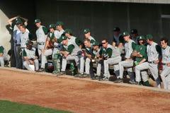 De spelers van het honkbal Stock Afbeeldingen