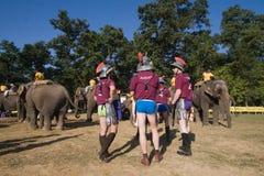 De spelers van het olifantenpolo tijdens olifantenpolo, Nepal stock afbeeldingen
