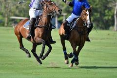 De spelers van het paardpolo in pologelijke royalty-vrije stock afbeeldingen