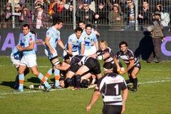 De spelers van het rugby stock fotografie