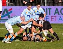 De spelers van het rugby in actie royalty-vrije stock afbeelding