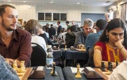 De spelers van het schaak Stock Fotografie