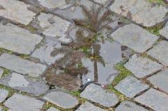 De spiegel van water tussen de stenen stock foto's