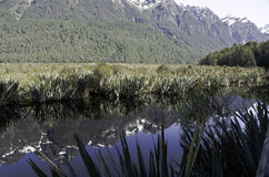 De Spiegelmeren in het Nationale Park van Fiordland Mooi Nieuw Zeeland Royalty-vrije Stock Foto