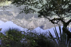 De Spiegelmeren in het Nationale Park van Fiordland Mooi Nieuw Zeeland Stock Afbeelding