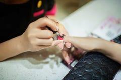 De spijkerkunstenaar past nagellak op de klanten toe Royalty-vrije Stock Afbeelding