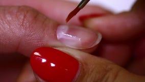De Spijkervernis met een Borstel stock video