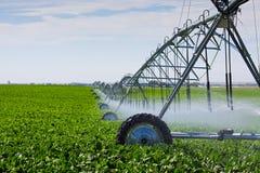 De Spil van de irrigatie Stock Foto