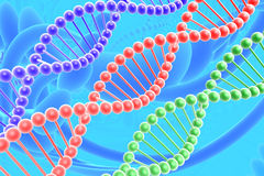 De spiralen van DNA Royalty-vrije Stock Afbeelding