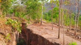 De spleet van het Pailand, Thailand stock videobeelden
