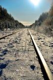 De spoorweg in het de winterhout Royalty-vrije Stock Afbeeldingen