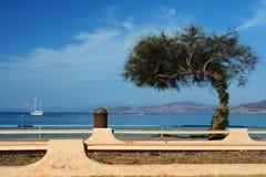 De spoorweg van Corsica Stock Foto