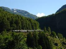 De spoorweg van Flam. Noorwegen. stock afbeeldingen