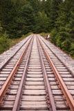 De spoorweg verdwijnt in een bos Stock Afbeelding