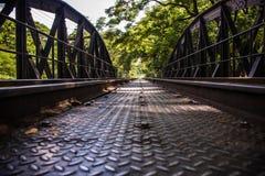 De spoorwegbrug Stock Foto's