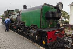 De Spoorwegmotor van de Beyerpauw Royalty-vrije Stock Afbeeldingen
