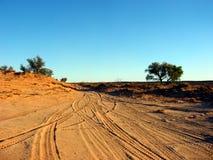 De Sporen van de woestijn Royalty-vrije Stock Afbeeldingen
