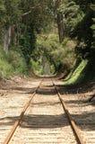 De sporen die van de trein in afstand gaan Royalty-vrije Stock Foto's